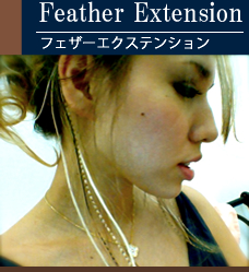 Feather Extension